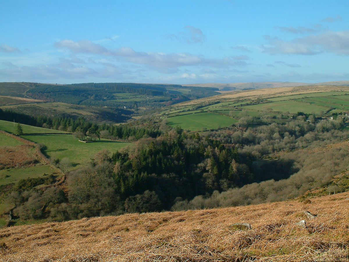 East Dart valley viewed from Yar Tor