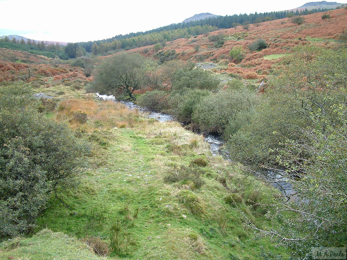River Meavy with remains of tin working