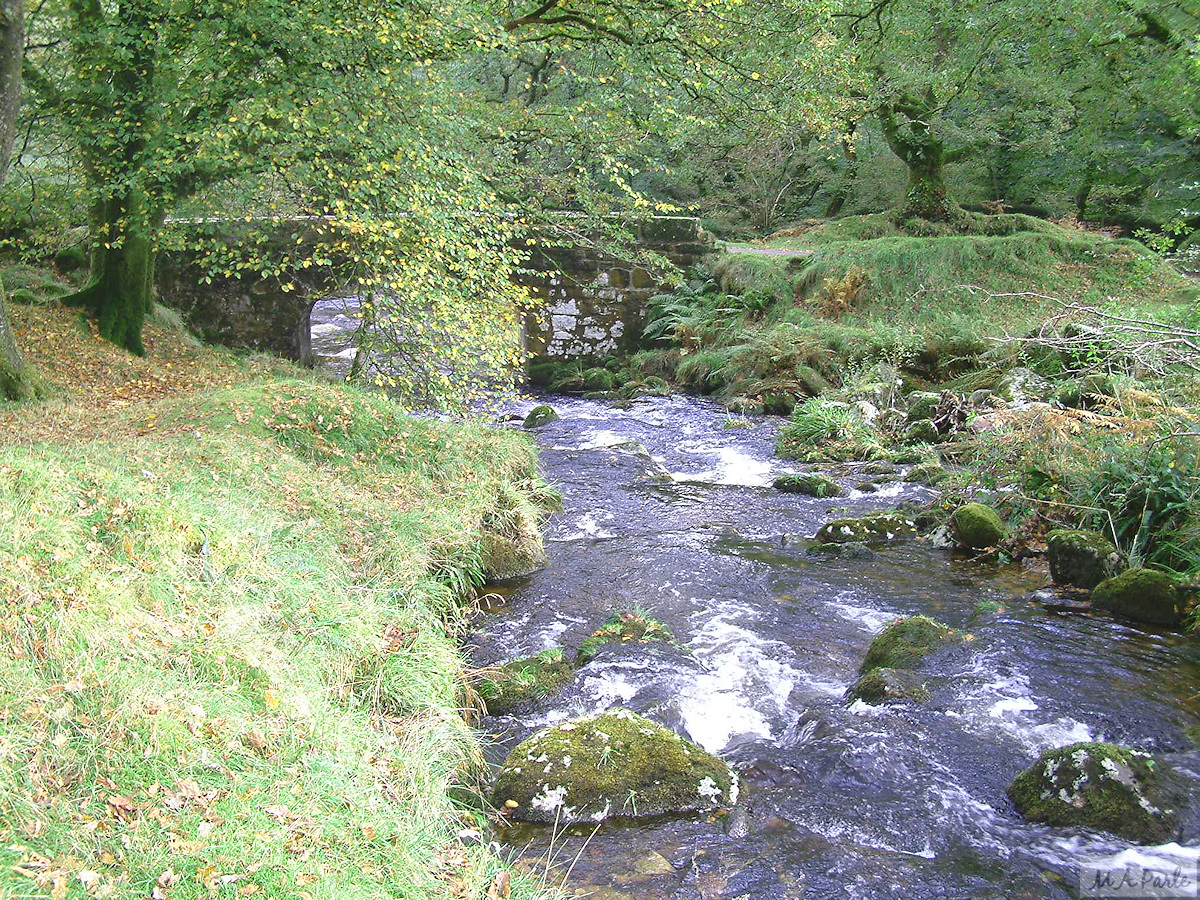 The River Meavy at Norsworthy Bridge