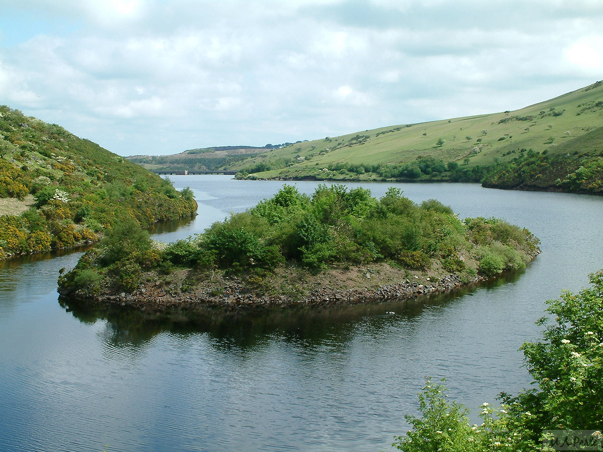 Island in Meldon Reservoir
