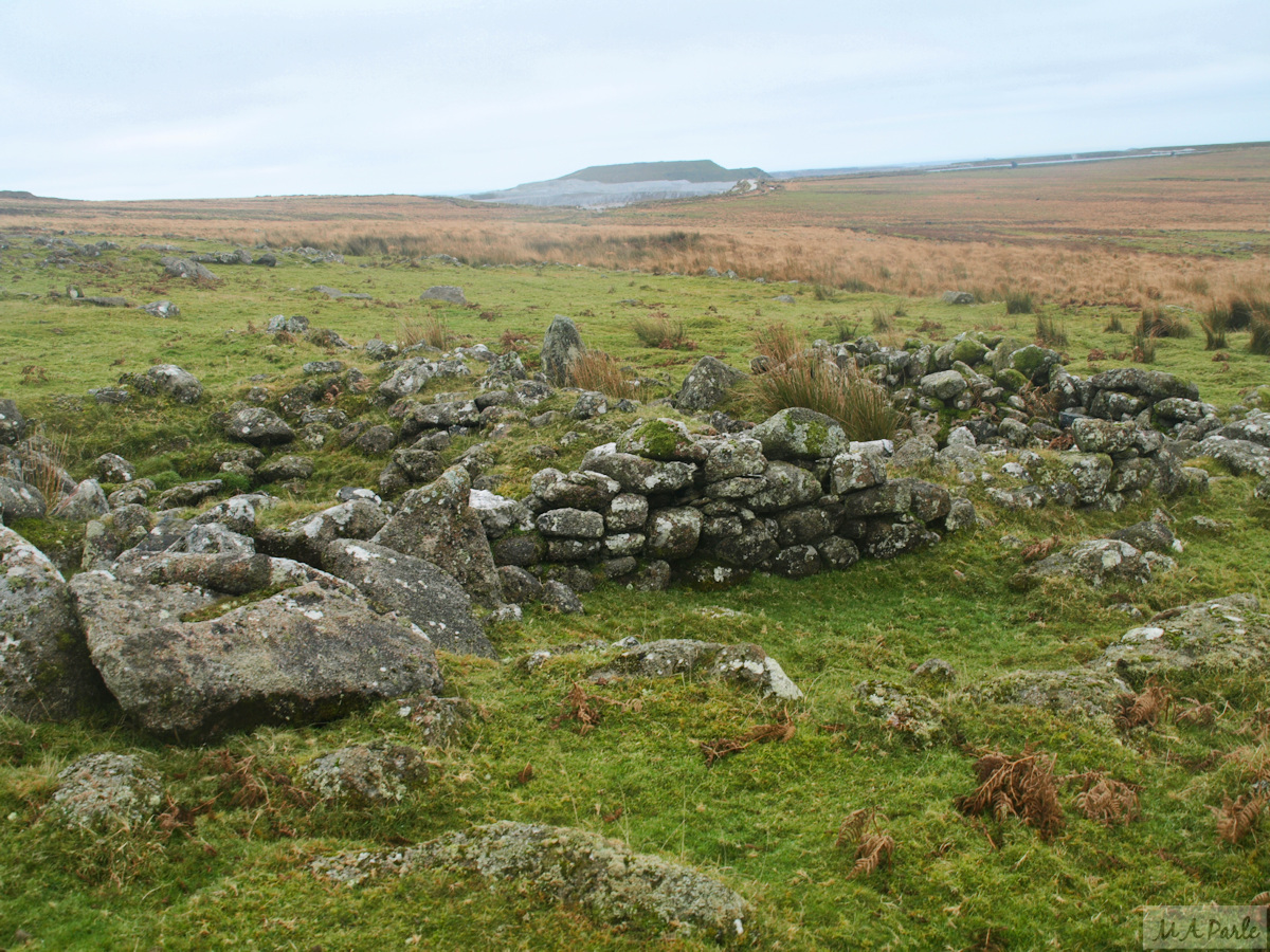 Remains of Trowlesworthy Warren Settlement on the western slope of Great Trowlesworthy Tor