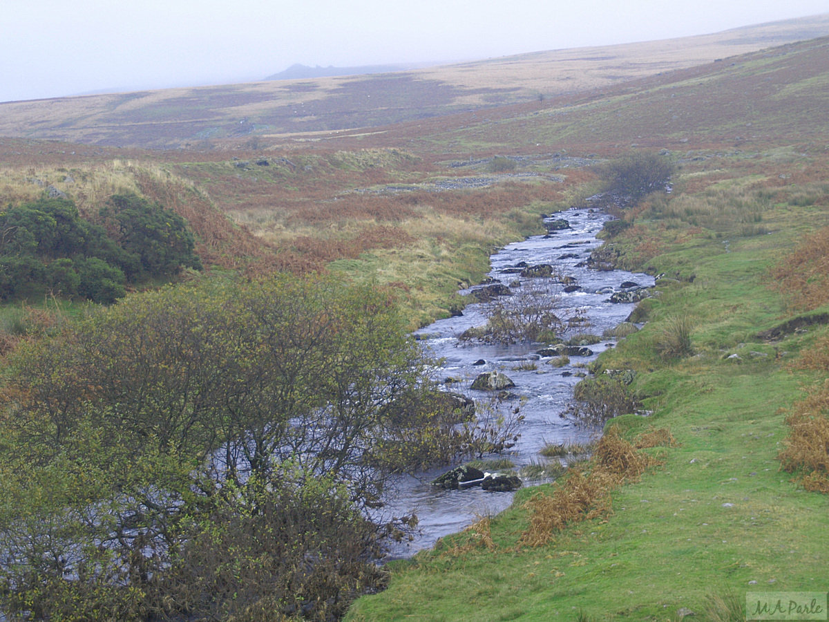 The River Plym as it flows down between Legis Tor and Trowlesworthy Warren